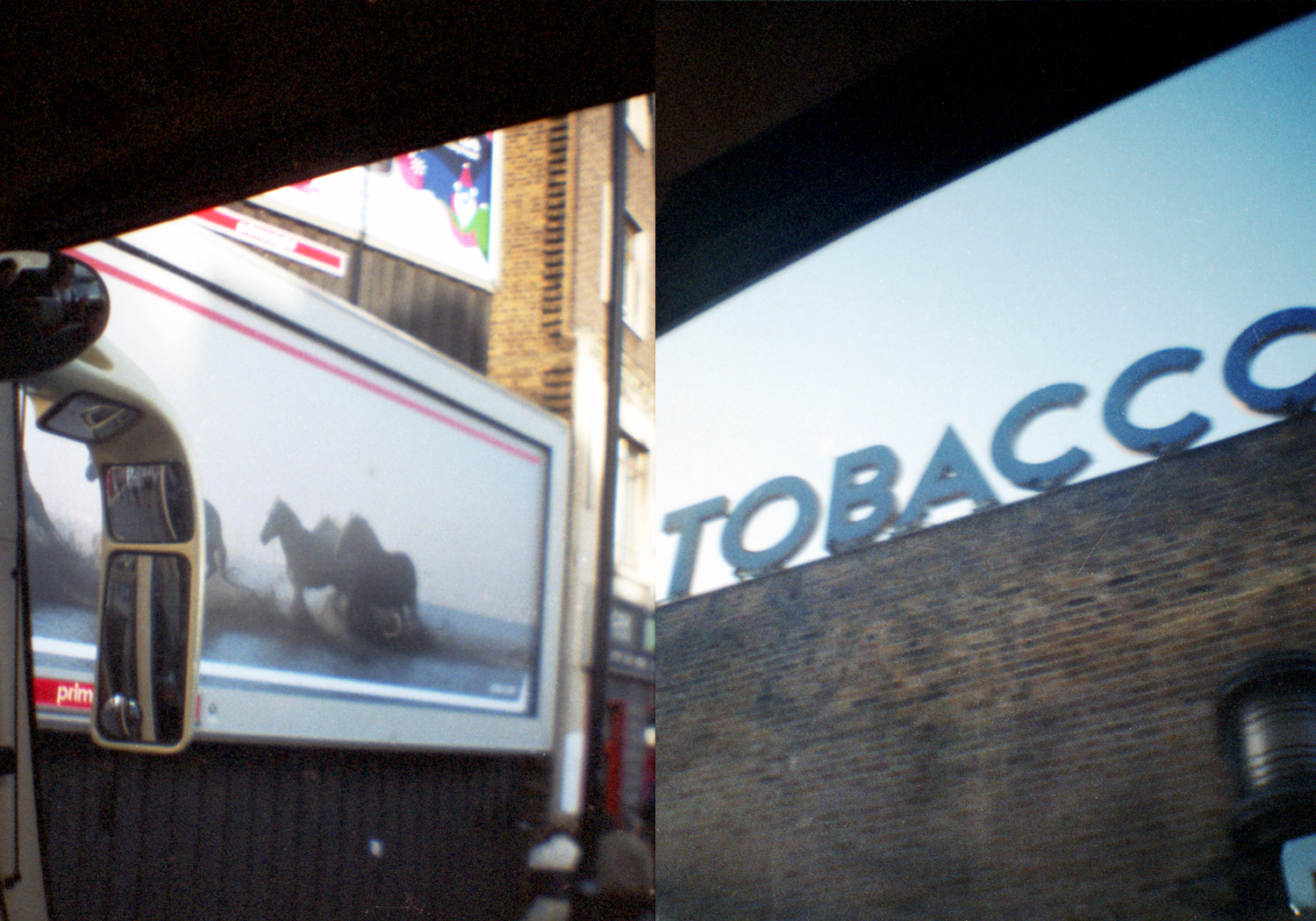 The Tobacco Horse (Lomofiles) 2012.